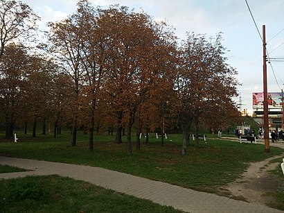 How to get to Gaštanový hájik with public transit - About the place