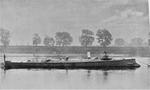 Gabbiano (ship) - NH 47558 - cropped.png