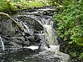 Ganllwyd NNR - panoramio (4).jpg