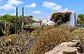 Garden - Museo Agrícola el Patio - Tiagua 01.jpg