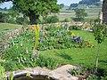 Garden at Howgill Farm - geograph.org.uk - 476937.jpg