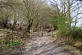 Gate on the bridleway, Ware's Wood - geograph.org.uk - 1252993.jpg