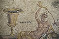 Gaziantep Zeugma Museum Acrotos mosaic 2484.jpg