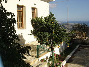 Gdochia - Orange tree in Gdohia