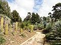 General view - Jardin d'oiseaux tropicaux - DSC05001.JPG