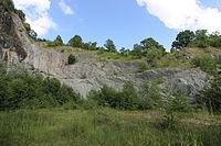 Geotop Steinbruch an der Schanz 13062015 (Foto Hilarmont) (27).JPG