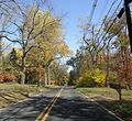Gillette New Jersey two lane road in October.jpg