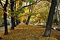 Gliwice - Park Chopina - panoramio (8).jpg