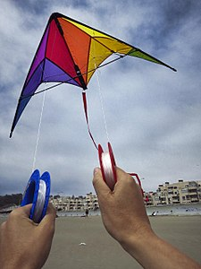Go fly a kite (7511318416).jpg