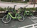 Gobee Bike in Ching Ho 02-02-2018.jpg