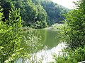 Gottasecca.Il lago del Vaglio2.jpg