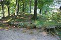 Grabhügel in den Hademarscher Bergen NIK 4215.JPG