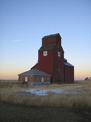 Raymond, Alberta - Raymond's last historic grain elevator. Demolished 2009