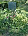 Grave Artmann HC.jpg