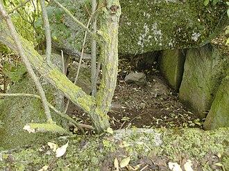 Megaliths in Mecklenburg-Vorpommern - Image: Groß Zastrow Hünengrab