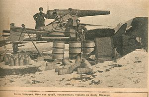 Erzurum Offensive - The Russians soldiers in front of captured Turkish guns