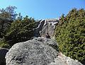 Hällmålningen i Tumlehed (RAÄ-nr Torslanda 216-1) 4384.jpg