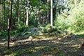 Hügelgrab Aunham.jpg