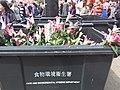 HK CWB 銅鑼灣 Causeway Bay 維多利亞公園 Victoria Park 年宵花市 Lunar New Year Fair Market February 2019 SSG 20.jpg
