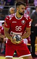 Handball-WM-Qualifikation AUT-BLR 039.jpg