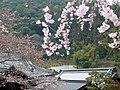 Hasedera Temple 長谷寺 - panoramio (2).jpg