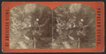 Havanna (Havana) Glen., Central Gorge, from Robert N. Dennis collection of stereoscopic views.png