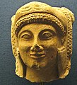 Head of Herakles with Lionskin (3347964425).jpg