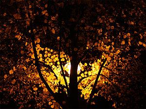 Deutsch: Herbst