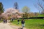 High Park, Toronto DSC 0191 (17391749662).jpg