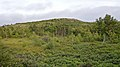 Hill viewed from Burma Road Trail - St. John's, Newfoundland 2019-08-08.jpg