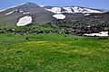 Hillside Sabalan دامنه های سبلان - panoramio.jpg
