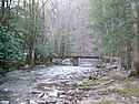 Thumbnail image of the Holly River flowing through Holly River State Park