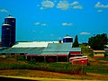 Hollywood Holsteins - panoramio.jpg