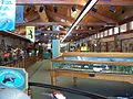 Homosassa Springs State Park east VC inside01.jpg