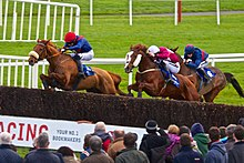 Horse Racing at Fairyhouse.jpg