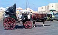 Horse and buggy 001.jpg