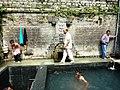 Hot Springs near Manali. 2020.jpg
