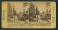 Hutching's Hotel and the Merced River, from Robert N. Dennis collection of stereoscopic views 2.png