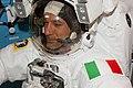 ISS-36 Parmitano in Airlock preparing for EVA.jpg