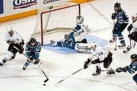 Ice Hockey sharks ducks.