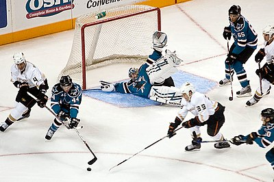 Ice Hockey sharks ducks.jpg