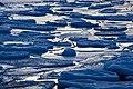 Ice cold (4262492319).jpg