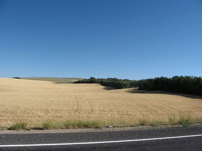 File:Idaho State Highway 33 Northeast of Rexburg, Idaho (1165500062).jpg