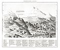 Illustration from A History of the Earth and Animated Nature by Oliver Goldsmith from rawpixel's own original edition of the publication 00007.jpg