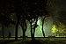 In the Park at night, Salvaterra de Miño.jpg