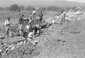 Infanterie beim Bau von Schützengräben - CH-BAR - 3237029.tif