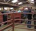 Inside the Cattle selling shed - geograph.org.uk - 804367.jpg