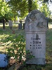 Bibow Adelsgeschlecht Wikipedia