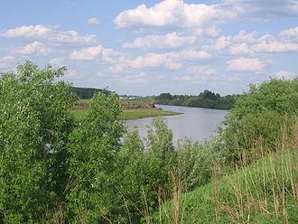 Inya River - Inya river (confluence of Ob) near Sarapulka village