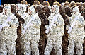Iranian army troops in ghillie camuaflage suits.jpg